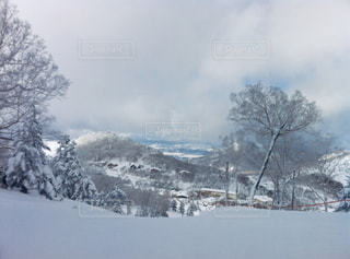 雪に覆われた斜面の写真・画像素材[1757473]