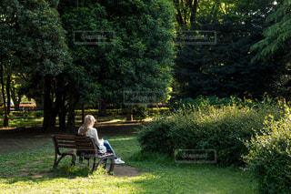 女性,公園,後ろ姿,ベンチ,人物,背中,人,後姿,ゆっくり,金髪,ゆったり