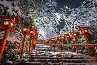 雪の日の、ライトアップされた貴船神社の写真・画像素材[1758429]