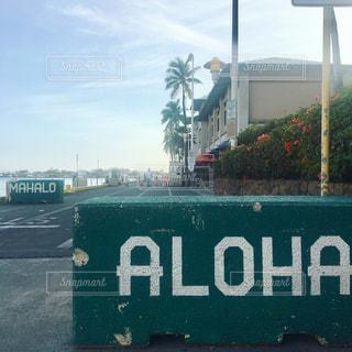 海,旅行,ヤシの木,ハワイ,海外旅行,アロハ,マハロ