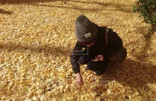 黄色,イチョウ,銀杏,yellow,私,イチョウの絨毯