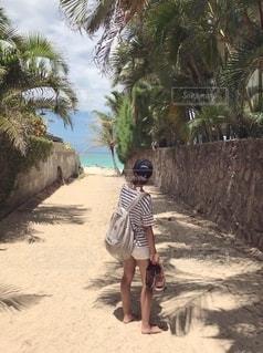 海,夏,ビーチ,砂浜,ボーダー,Tシャツ,ハワイ,半袖