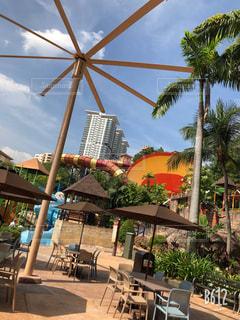 自然,動物,屋外,水面,樹木,マレーシアサンウェイラグーン
