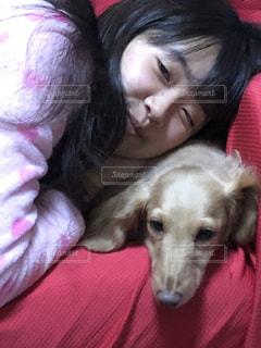犬のベッドに横たわっている女性の写真・画像素材[2715826]