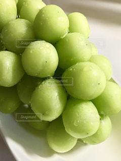 皿の上の緑のぶどうの写真・画像素材[1765501]