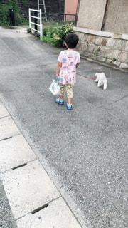 犬の散歩🐕の写真・画像素材[1785547]