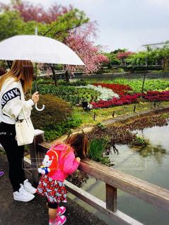 ピンクの傘を持った小さな女の子の写真・画像素材[2169251]
