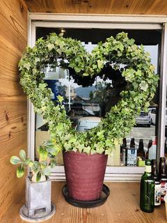 植物の花瓶の写真・画像素材[2272315]