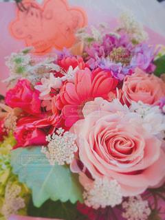 ピンクの花の花束の写真・画像素材[1813850]