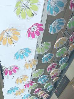 傘,カラフル,水,水滴,可愛い,三重,雨の日,おしゃれ,長島,ジャズドリーム,雨の日フォト