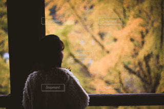 窓の前に座っている人の写真・画像素材[1804238]