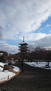 冬の東寺の写真・画像素材[1779951]