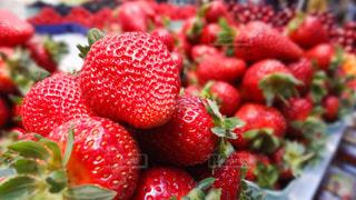食べ物,赤,いちご,フルーツ,果物,果実,カナダ,ストロベリー,バンクーバー,食材,フレッシュ,グランビルアイランド