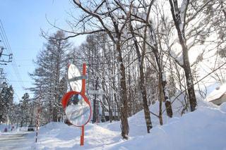 雪景色の写真・画像素材[1770513]