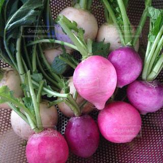 新鮮お野菜の写真・画像素材[1793694]