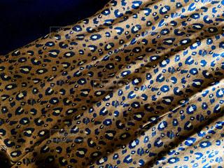 青い傘付きのベッドの写真・画像素材[3171777]