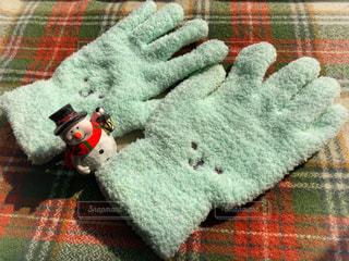 お気に入りのかわいい手袋です。の写真・画像素材[1818435]