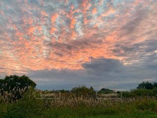 秋の夕方の雲。の写真・画像素材[2447908]