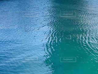 海の写真・画像素材[2988956]