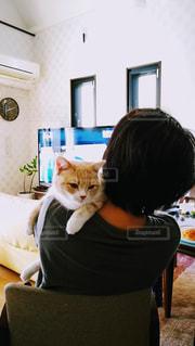 テーブルの上に座って猫の写真・画像素材[1794237]