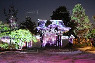 高台寺ライトアップの写真・画像素材[1799865]