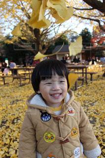 子ども,冬,葉っぱ,葉,樹木,イチョウ,男の子