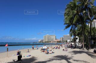 ハワイの青空の写真・画像素材[1862143]