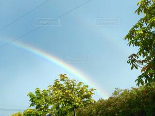 二重の虹の写真・画像素材[2424443]
