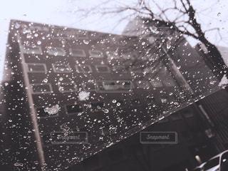 雨の写真・画像素材[1817238]