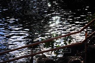 水のボートの写真・画像素材[1874941]