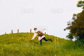 緑豊かな野原の上で空中を飛んでいるの写真・画像素材[2179446]