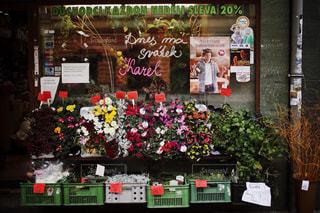 建物,花,街並み,夕焼け,ヨーロッパ,チェコ,海外旅行,スナップ,お花屋さん
