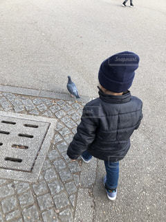 鳩を追いかけるの写真・画像素材[1778620]