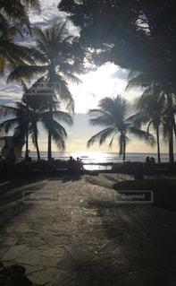 ビーチ,雲,砂浜,水面,海岸,夕方,ヤシの木,ハワイ