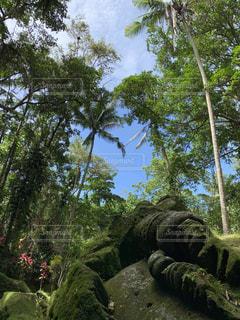 海外,旅行,パワースポット,神秘的,リゾート,海外旅行,バリ島,バリ