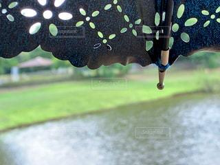 自然,公園,傘,屋外,池,樹木,レース,東屋