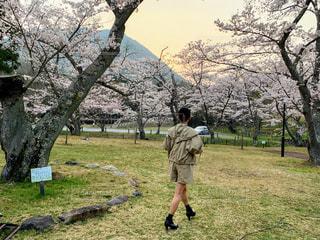 春コーデの写真・画像素材[2009708]