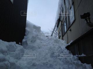 No.176538 雪