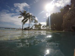 Hawaiiの写真・画像素材[654492]