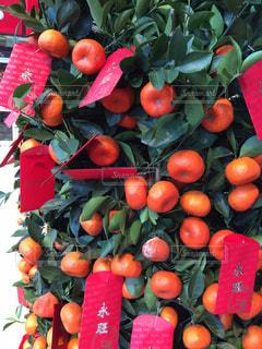 葉,果実,柑橘,旧正月,蜜柑,ミカン,お年玉,おとしだま,赤袋
