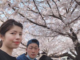 桜が咲いてる公園での休日の写真・画像素材[2076507]