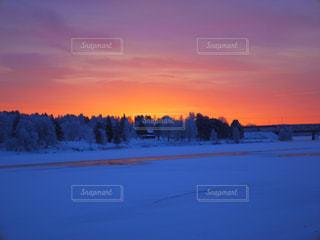 自然,風景,冬,雪,旅行,朝,日の入り,北欧,グラデーション,フィンランド,ラップランド,インスタ映え,極夜,朝の10時