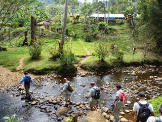 風景,観光,ハイキング,海外旅行,ジャングル,トレイル,パプアニューギニア