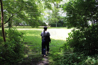 女性,公園,木,緑,後ろ姿,草,人物,背中,新緑,人,後姿