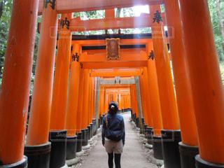 女性,風景,京都,神社,赤,後ろ姿,鳥居,観光,人物,背中,人,後姿,旅行,伏見稲荷大社,千本鳥居,伏見稲荷,朱色
