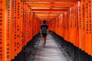 男性,風景,京都,神社,赤,後ろ姿,鳥居,観光,人物,背中,人,後姿,旅行,伏見稲荷大社,千本鳥居,伏見稲荷,朱色