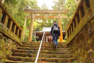 女性,神社,階段,後ろ姿,鳥居,観光,コケ,苔,人物,背中,人,後姿,石,熊野神社