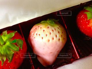 食べ物,果物,チョコレート,バレンタイン,イチゴ,白イチゴ