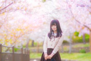 桜と私。の写真・画像素材[2027299]