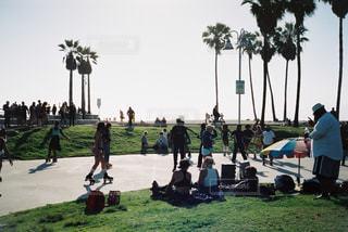 夏,海外,ビーチ,砂浜,アメリカ,旅行,ヤシの木,ロサンゼルス,beach,フィルム,サンセット,西海岸,パームツリー,ベニスビーチ,フィルム写真,ローラースケート,フィルムフォト